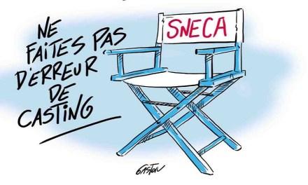 CSE Sud Rhône Alpes – Séance du 18 juillet 2019