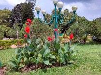 Zoo Gardens Trivandrum