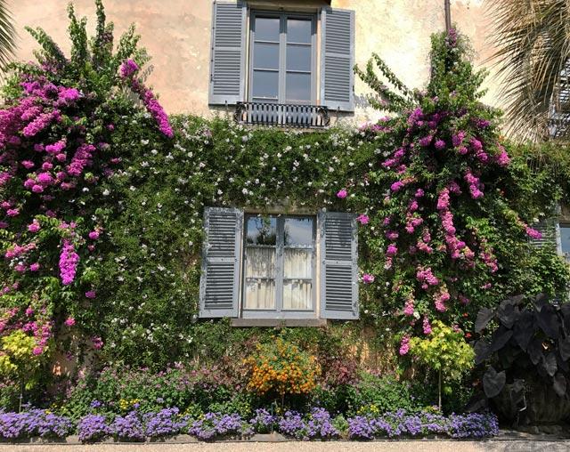 Vuoi visitare dei giardini meravigliosi? Non perderti le Isole Borromee del Lago Maggiore