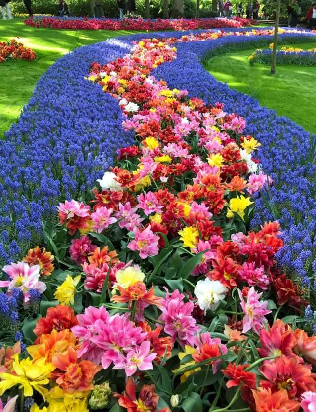 Il parco botanico Keukenhof in Olanda lascia ogni anno migliaia di turisti senza parole!