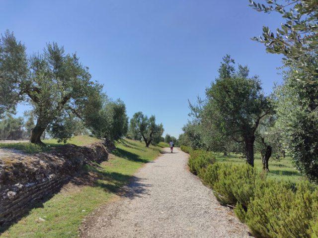 A Sirmione cosa vedere? Le Grotte di Catullo, grande villa romana del I sec a.C