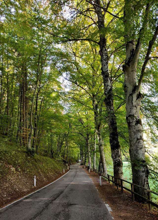 Il Lago di Cei è circondato dalla natura del Trentino
