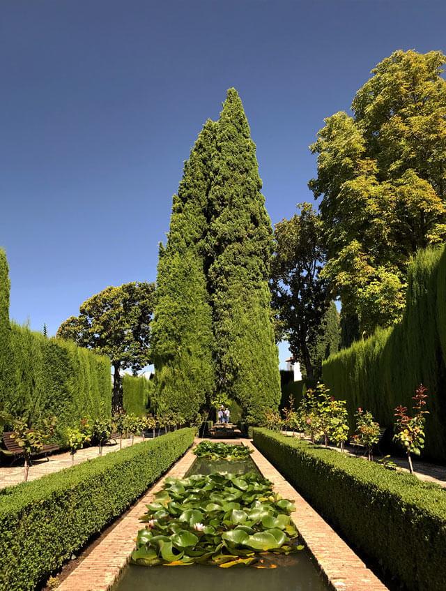 I Giardini Bassi del Generalife hanno vasche d'acqua e siepi