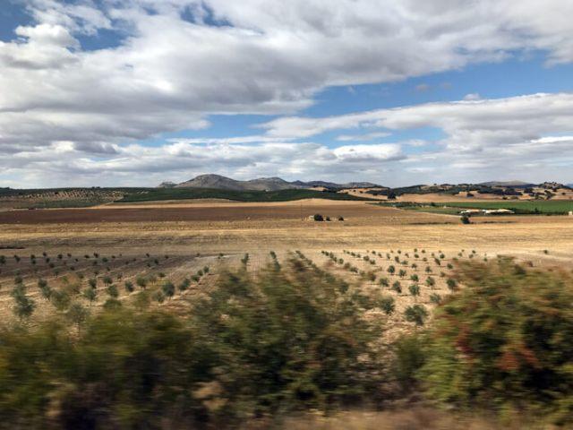 Come raggiungere Granada da Malaga? In autobus o in treno per la natura dell'Andalusia