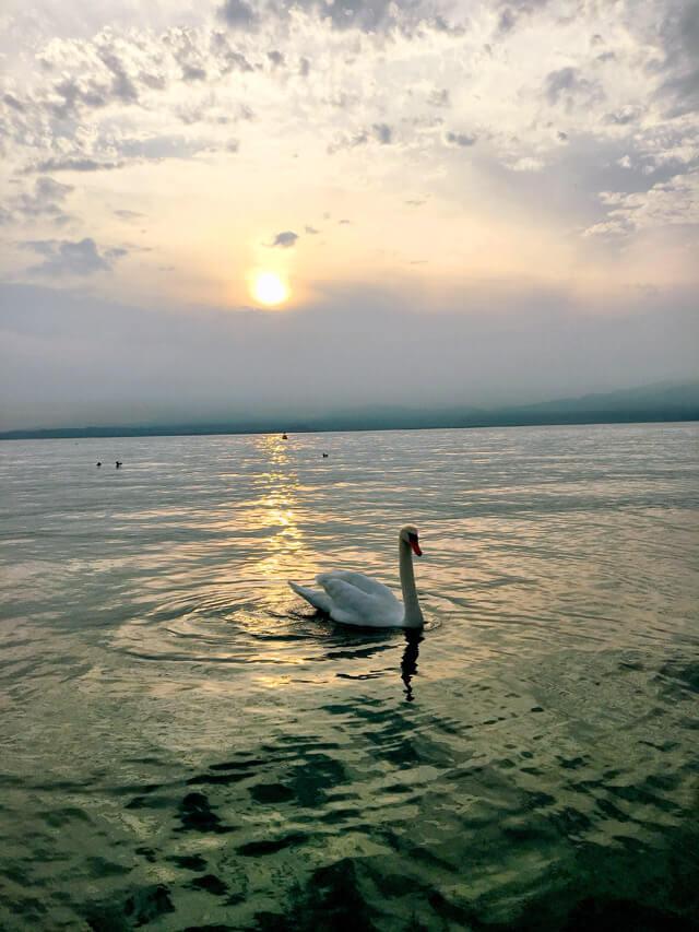 Lazise regala un tramonto fantastico sul Lago di Garda
