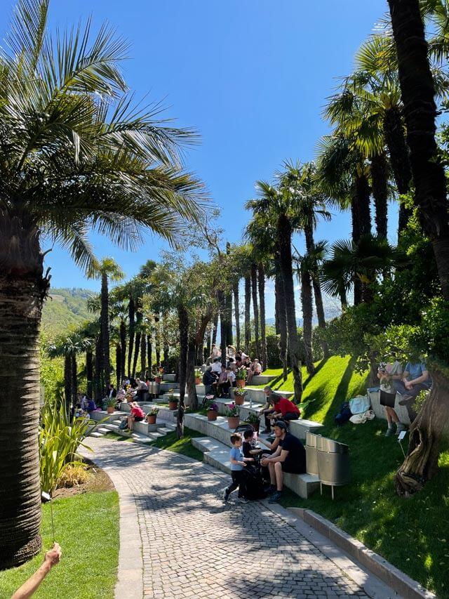 IlLaghetto dei Giardini Trauttmansdorff è circondato da palme
