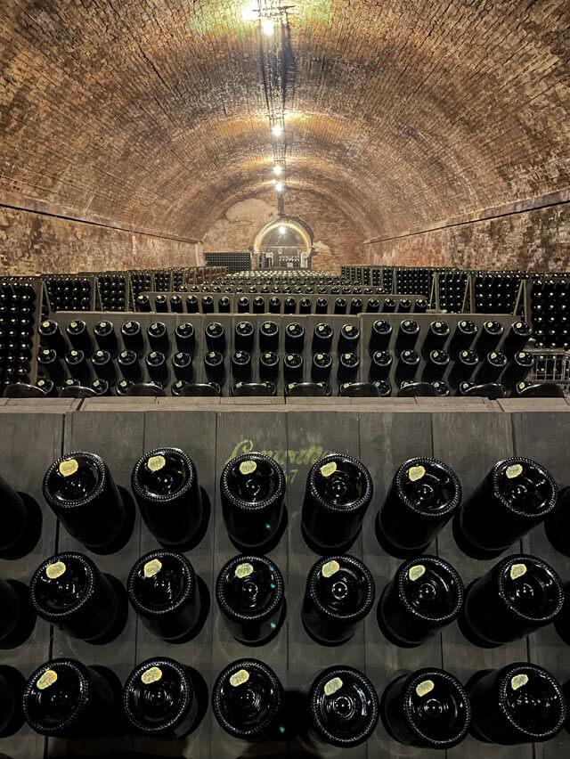 Le Langhe hanno cantine che producono vini famosi in tutto il mondo