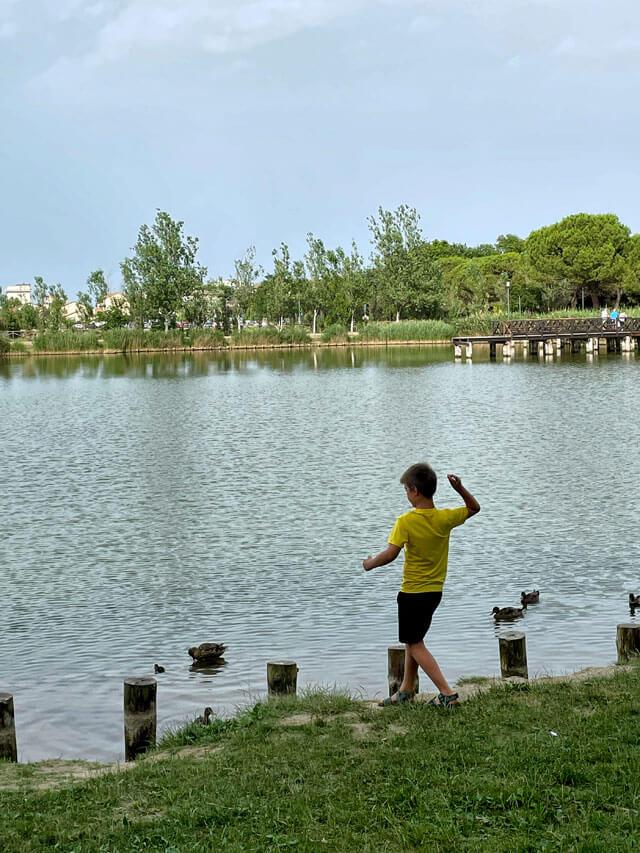 Cosa vedere a Bellaria-Igea Marina? Il Parco del Gelso, oasi verde