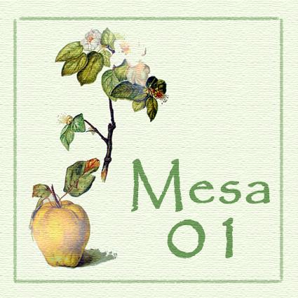 Mesa 01