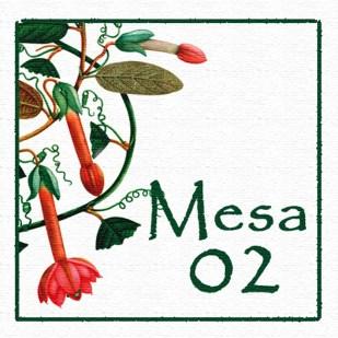 Mesa 02
