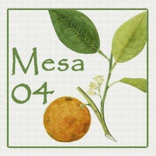 Mesa 04