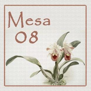 Mesa 08