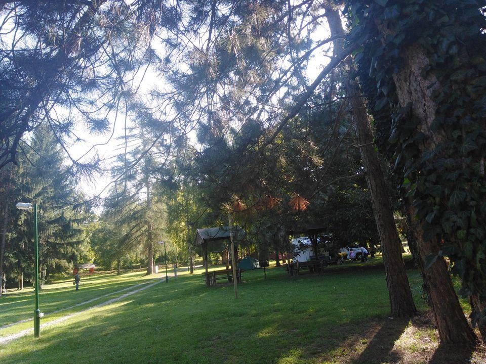 Eko kamp Fruška gora na Stražilovu