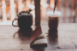 professional-book-review-fiction-nonfiction