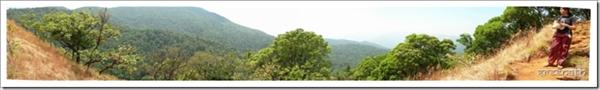 Panorama view from Kodachadri
