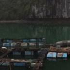 www.sreep.com 20160320_114156 Vietnam, Halong-Bucht: Unbeschreibliches Naturspektakel