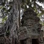 www.sreep.com 20180214_113827 Cambodia: Tempelanlage Ankor Wat - Kambodschas Wahrzeichen