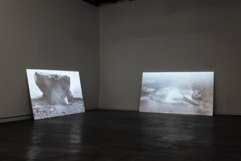Sleeping Dog (Installation view at The Bindery Projects)HD video loop10 min2013