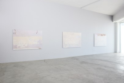 Monochrome, 2017, Installation View