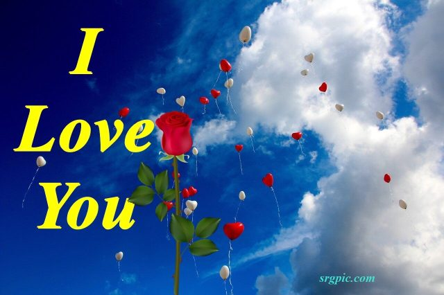 whats Dp Love balloon with rose