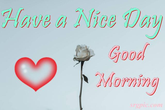 good-morning-wishes-with-rose-and-heart
