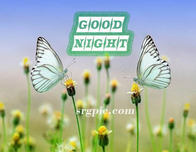 good-night-images-simple