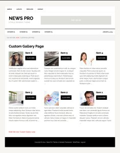 Custom Gallery display in WordPress using Views