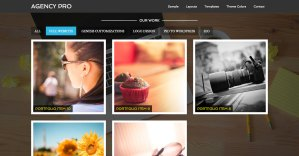How to replace Featured Posts in Home Middle section of Agency Pro with Filterable Portfolio