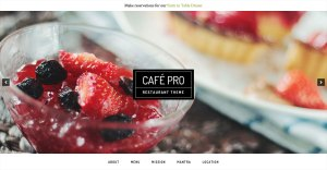 How to replace the Front page Header Background Image with a Slider in Café Pro