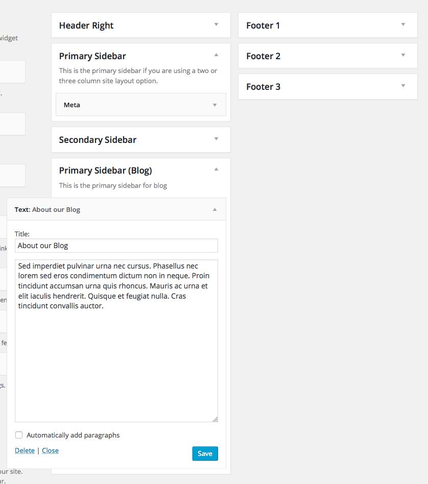 custom-primary-sidebar-widgets