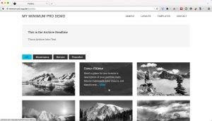 Filterable Portfolio Archive in Minimum Pro