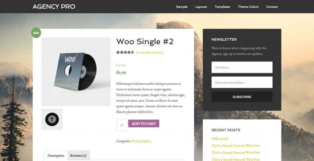 woocommerce-product-custom-background-agency-pro