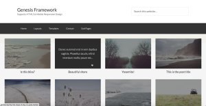 Responsive Featured Posts' Grid with Titles below Images and Excerpts Overlay on Hover in Genesis