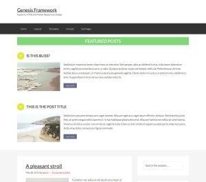 Custom Featured Posts in Genesis using Genesis Featured Posts Combo