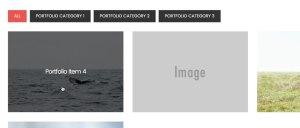 Filterable Portfolio in Digital Pro