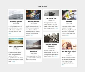 Blog posts in Masonry layout on Altitude Pro front page