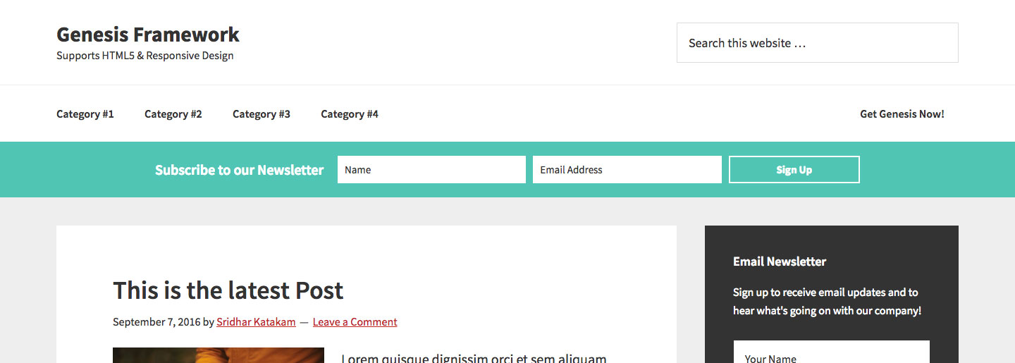 Horizontal Opt-in Form in Genesis using eNews Extended plugin and ...