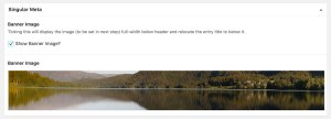 Full width banner image on select singular pages in Genesis using ACF