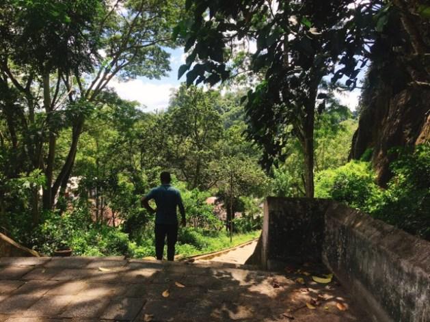 Sri Lanka Jasmine Tours & Drivers スリランカジャスミンツアーズ撮影。 マルキリガラ寺院 マルキリガラ遺跡 ムルキリガラ から見る景色3