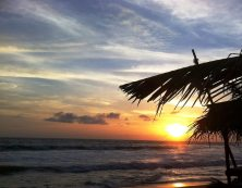 Hihhaduwa beach tour guide sri lanka (34)