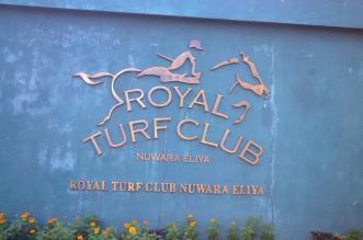 Nuwara eliya sri lanka upcountry island tours good hotels (5)