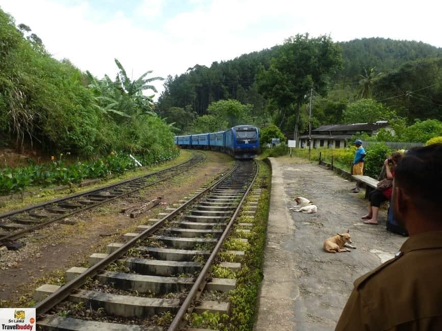 Ella Train Station Nanu Oya