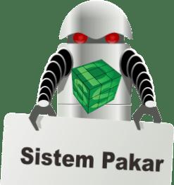 sistem-pakar-dan-DSS