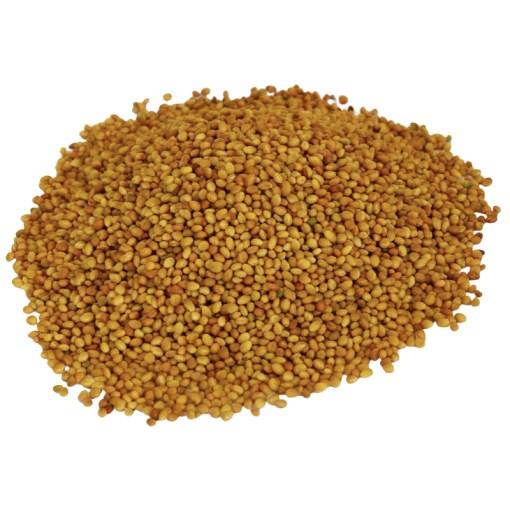 SriSatymev Barseem Seeds | Berseem | Clover Seeds