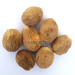 SriSatymev Jaiphal | Nutmeg