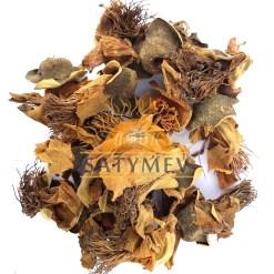 SriSatymev Semal Flower