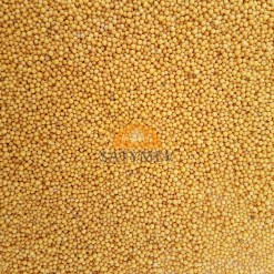 SriSatymev Yellow Mustard Seeds