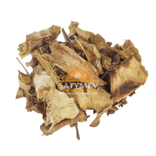 SriSatymev Aloe Vera Leaves | Ghrit Kumari Patta
