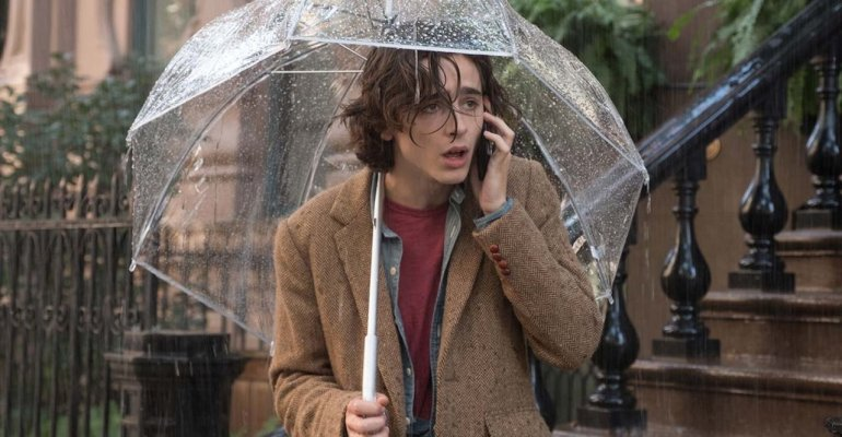 ״יום גשום בניו יורק״, סקירה