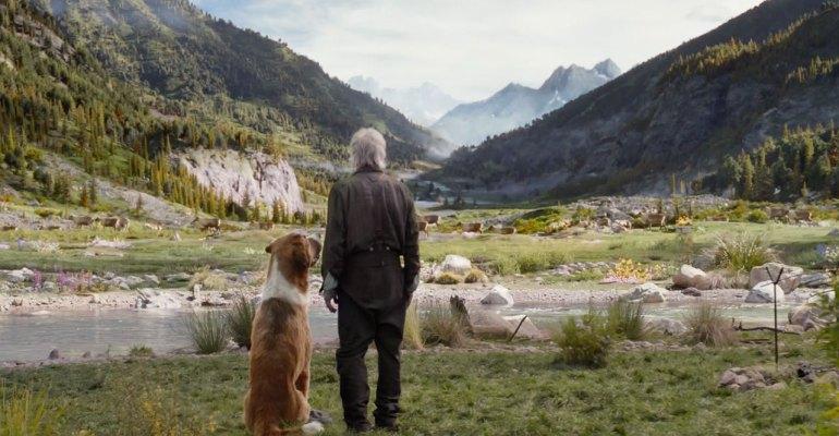 סרטים חדשים: ״פרשת המים״ של טוד היינס
